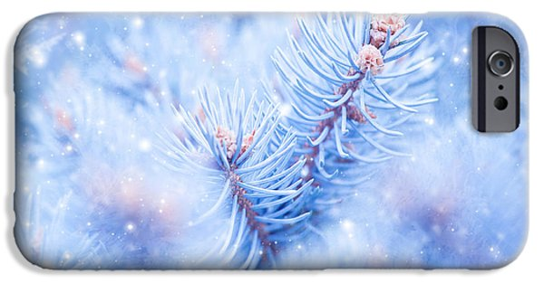 Wintertime iPhone Cases - Winter window background iPhone Case by Anna Omelchenko