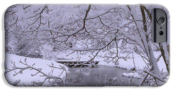 Snow Flake iPhone Cases - Winter Wonderland 2 iPhone Case by Mike McGlothlen