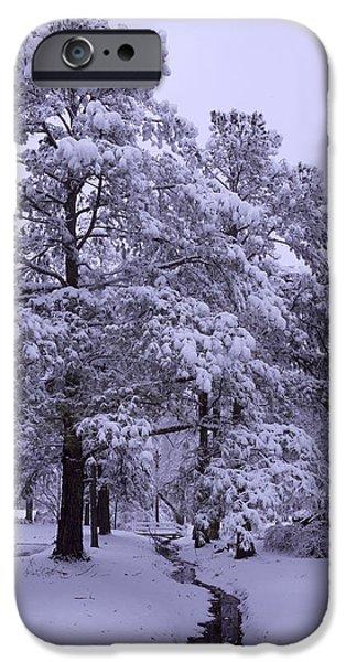 Winter Wonderland 3 iPhone Case by Mike McGlothlen