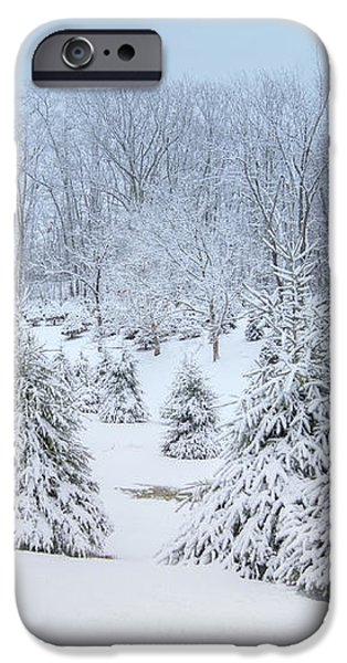 Winter Wonderland iPhone Case by Benanne Stiens