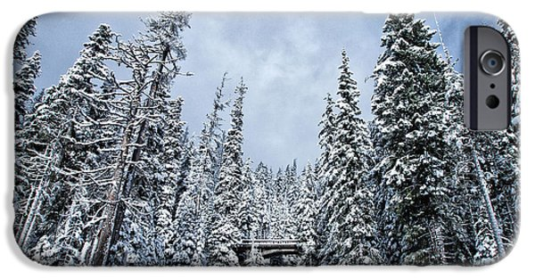 Winter Scene iPhone Cases - Winter Wonderland iPhone Case by Darren  White