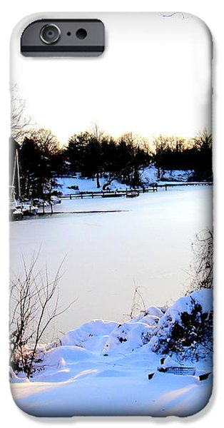 Winter Wonderland  In Maryland USA iPhone Case by Danielle  Parent