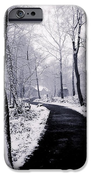 Winter iPhone Cases - Winter Wonderland iPhone Case by Martin Newman