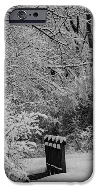 Winter Wonderland iPhone Case by Sebastian Musial