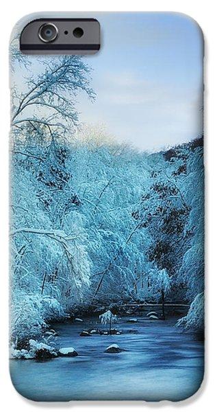 Winter Wonderland iPhone Case by Thomas Schoeller