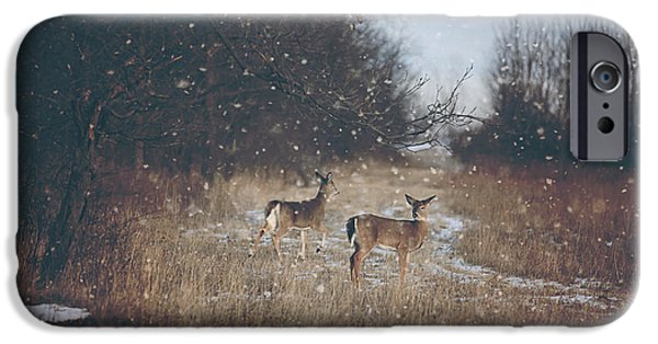 Winter Photographs iPhone Cases - Winter Wonders iPhone Case by Carrie Ann Grippo-Pike