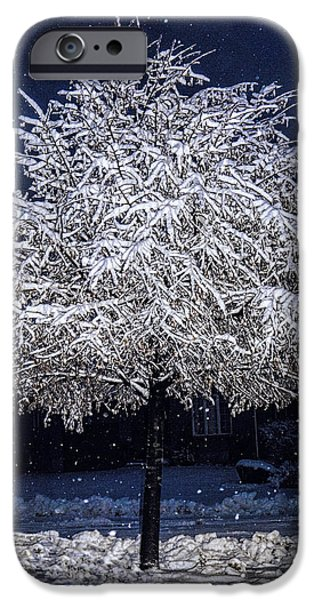 Storm iPhone Cases - Winter Wrapping iPhone Case by Jo-Anne Gazo-McKim