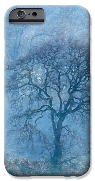 Mighty Oak iPhone Cases - Wintering Oak iPhone Case by Angie Vogel