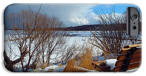 Salt Marsh. New England iPhone Cases - Winterlude iPhone Case by Dianne Cowen