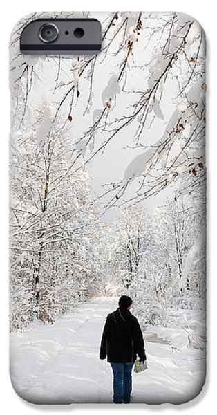 Winterly forest with snow covered trees iPhone Case by Matthias Hauser