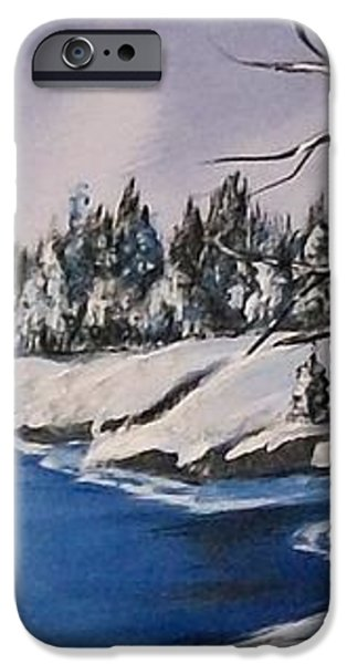 Winter's Blanket iPhone Case by Sharon Duguay