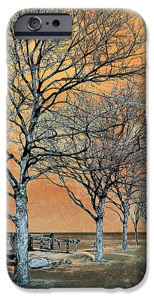 Winter's Dawn iPhone Case by Shawna  Rowe