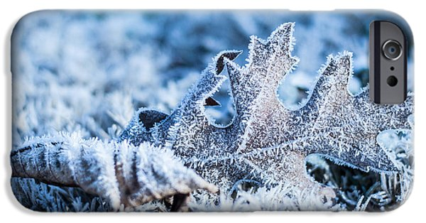 Wintertime iPhone Cases - Winters Icy Grip iPhone Case by Parker Cunningham