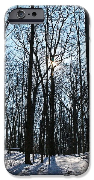 Forest iPhone Cases - Winters Illumination iPhone Case by Melany Raubolt