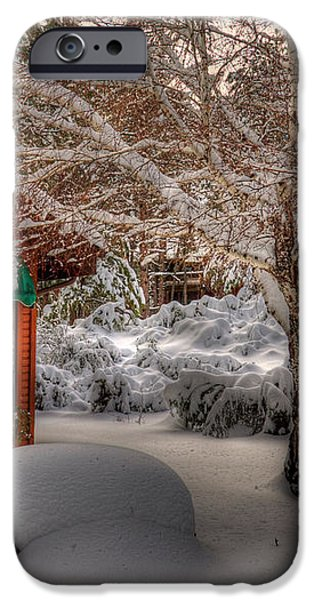 Winters Lace iPhone Case by K D Graves