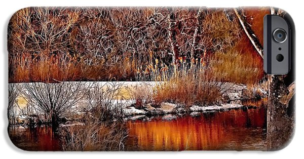 Golden Trout iPhone Cases - Winters Light iPhone Case by Rick Todaro