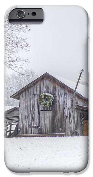 Winter's Past iPhone Case by Benanne Stiens