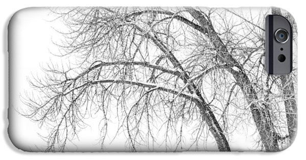 Snow Scene iPhone Cases - Winters Weight iPhone Case by Darren  White