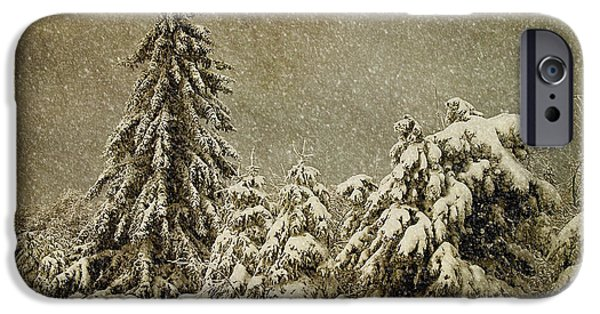 Trees In Snow iPhone Cases - Winters Wrath iPhone Case by Lois Bryan