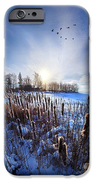 Vertical Flight iPhone Cases - WinterTails iPhone Case by Phil Koch