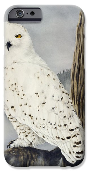 Snowy Paintings iPhone Cases - Winterwise iPhone Case by Rick Bainbridge