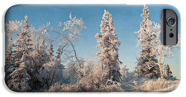 Snowy Day iPhone Cases - Wintery iPhone Case by Priska Wettstein