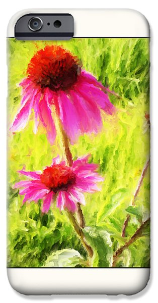 Big Blue Marble iPhone Cases - Wisconsin Cone Flowers iPhone Case by Kelly Gibson