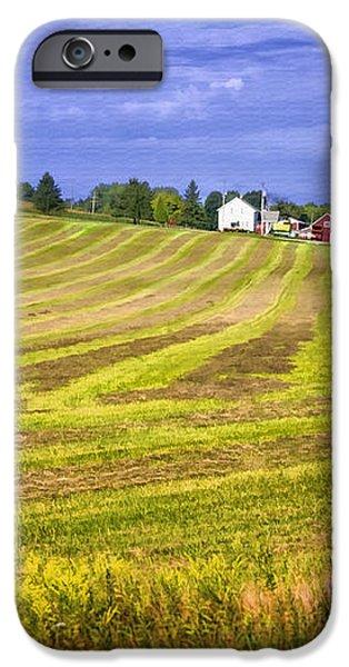 Wisconsin Dawn iPhone Case by Joan Carroll