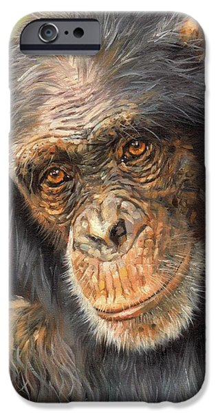 Animal Wisdom iPhone Cases - Wise Eyes iPhone Case by David Stribbling