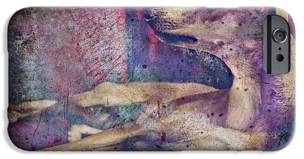 Purebred Digital Art iPhone Cases - Wishing and Hoping iPhone Case by Danilo Piccioni