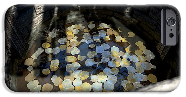 Ledge Digital iPhone Cases - Wishing Well With Coins Perspective iPhone Case by Allan Swart