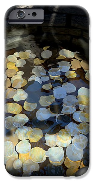 Wishing Well With Coins Perspective iPhone Case by Allan Swart