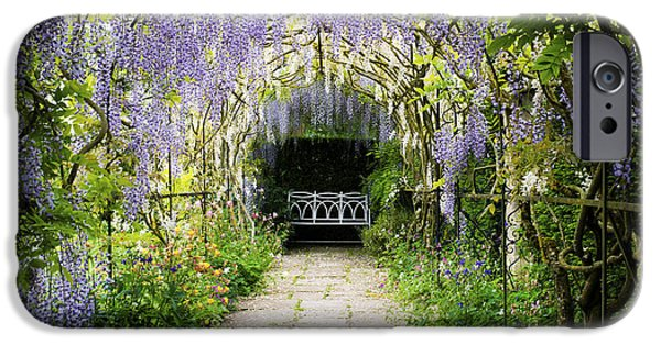 Pathway iPhone Cases - Wisteria Archway  iPhone Case by Tim Gainey
