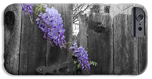 Selective Color iPhone Cases - Wisteria iPhone Case by Dylan Punke