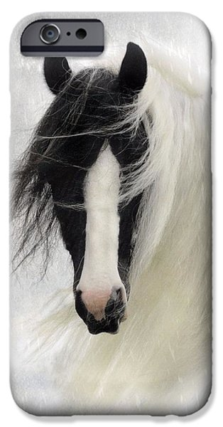 Horses iPhone Cases - Wisteria  iPhone Case by Fran J Scott