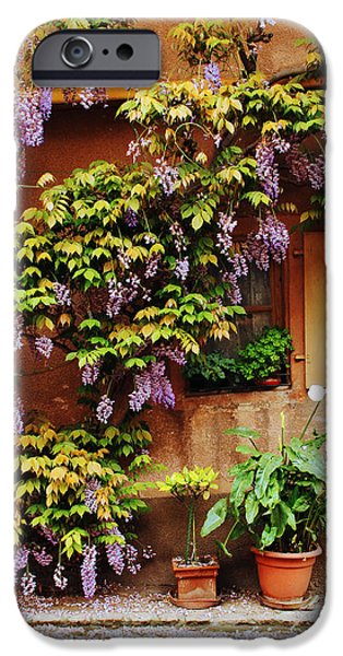Wisteria on Home in Zellenberg 4 iPhone Case by Greg Matchick