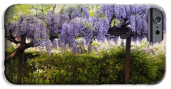 Spring iPhone Cases - Wisteria Trellis iPhone Case by Jessica Jenney