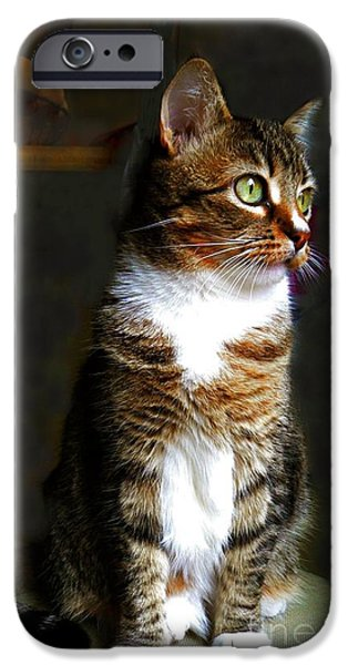 """indoor"" Still Life Digital Art iPhone Cases - Wistful  iPhone Case by Diana Besser"