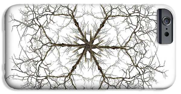 Mandala Photographs iPhone Cases - Within iPhone Case by Debra and Dave Vanderlaan