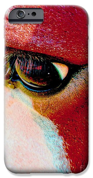 American Saddlebred Art iPhone Cases - Within The Horses Eyes iPhone Case by Annie Zeno