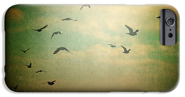 Flying Seagull iPhone Cases - Without iPhone Case by Taylan Soyturk