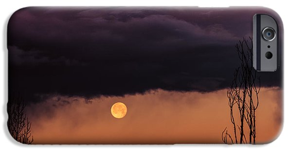 Sedona iPhone Cases - Wolf Moon iPhone Case by Buffalo Fawn Photography