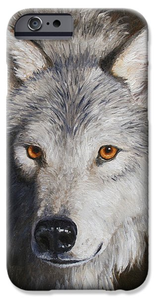 Wild Animals iPhone Cases - Wolf Portrait iPhone Case by Crista Forest