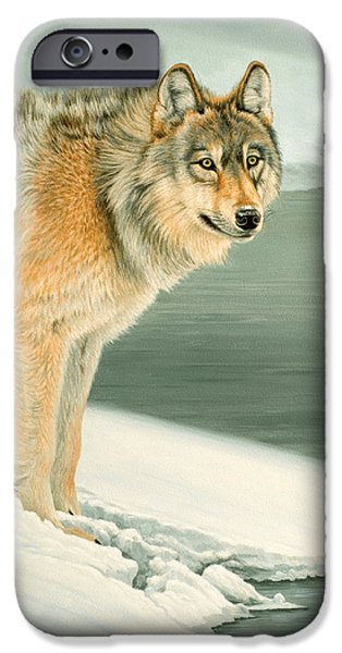 Yellowstone Park iPhone Cases - Wolf Portrait-Lamar Valley  iPhone Case by Paul Krapf