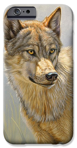 Animal Portraits iPhone Cases - Wolf Portrait iPhone Case by Paul Krapf