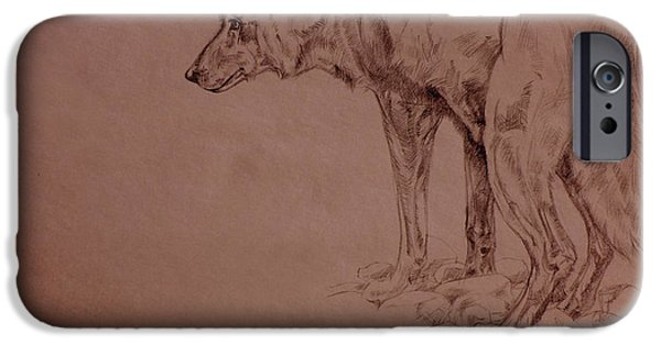 Nature Study Drawings iPhone Cases - Wolf Sketch iPhone Case by Derrick Higgins