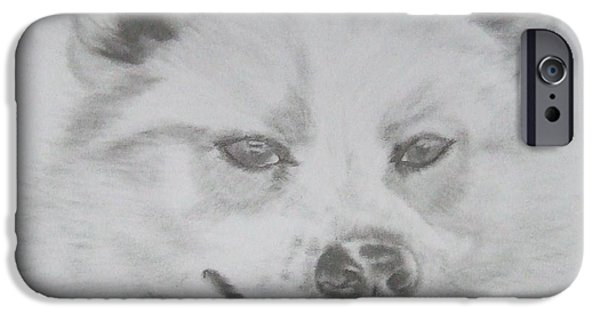 Husky Drawings iPhone Cases - Wolf The Husky iPhone Case by Sandra Muirhead