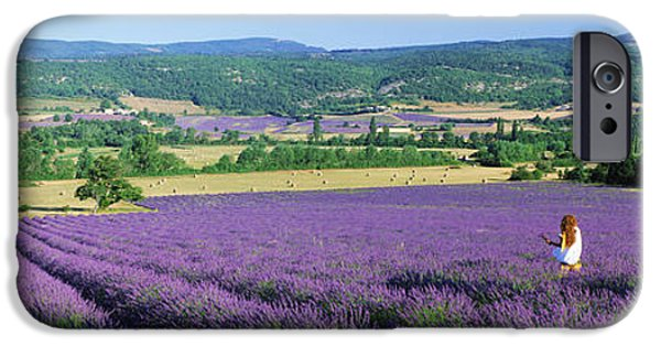 Women Only iPhone Cases - Woman In A Field Of Lavender iPhone Case by Panoramic Images