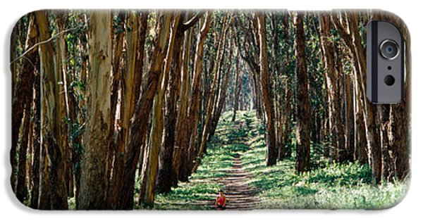 Women Only iPhone Cases - Woman Walking On A Path In A Park, The iPhone Case by Panoramic Images