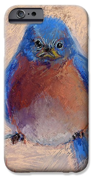 Baby Bird Pastels iPhone Cases - Wonder Bird iPhone Case by Billie Colson